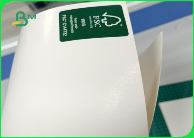 FSC certified Ink evenly and Exquisite color 300gsm FBB coated board in roll
