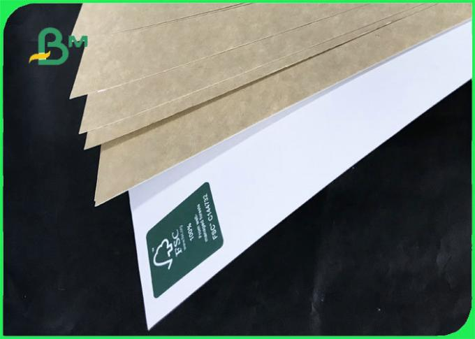 FSC Certified 250gsm - 360gsm Clay Coated Kraft Back For Detergent Box
